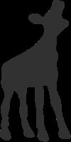 logo-nff